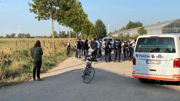 De politie haalde 55 feestvierders uit een maïsveld in Desteldonk.