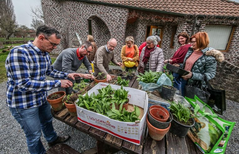 De Kuurnse tuiniervereniging Carpe Diem organiseert dit jaar een cursus 'moestuinieren'. De les van afgelopen weekend ging door in de Groene Long.