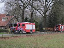 Man (69) komt om bij woningbrand in De Pol
