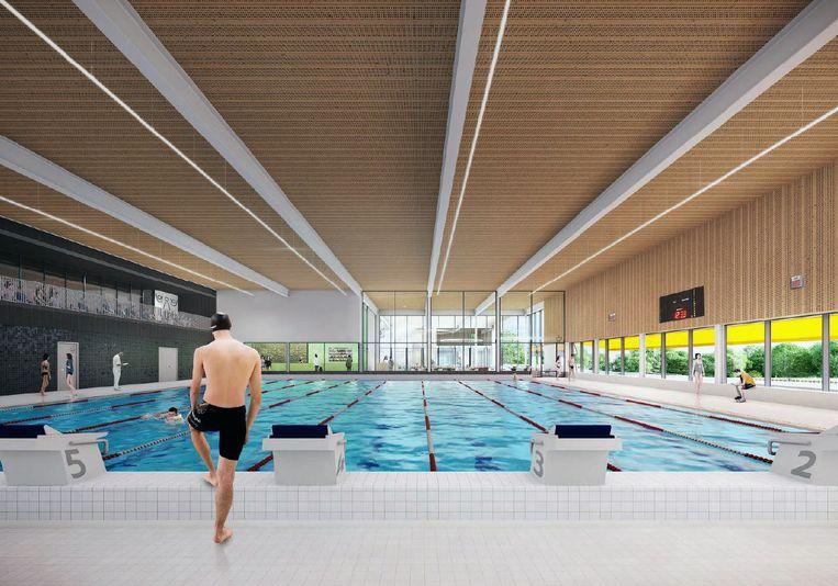 Zo zal het nieuwe zwembad er uitzien.