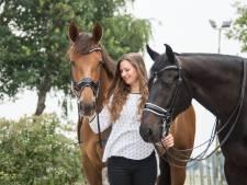Steeds minder paardenmeisjes, maar Daphne stopt niet: 'Hakken uit, rijlaarzen aan'