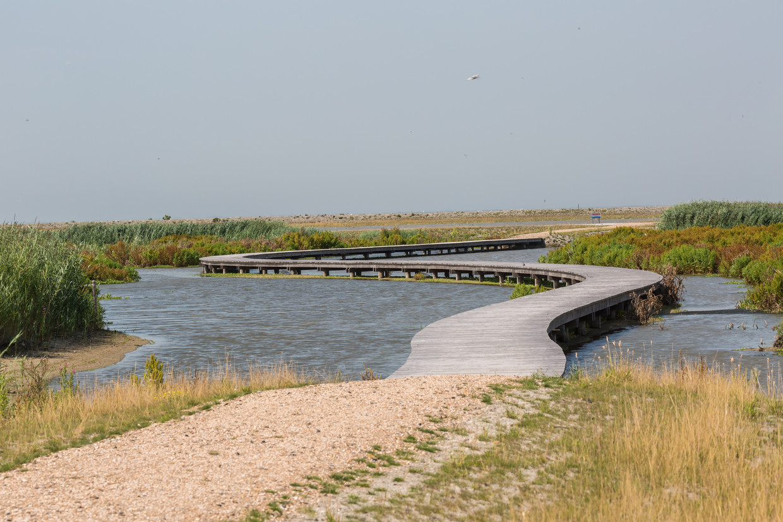 De Marker Wadden zijn open voor publiek, er slingert een wandelpad over de kunstmatige archipel.