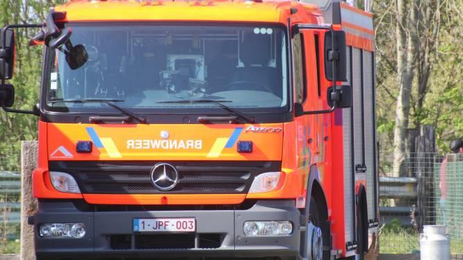 Haagbrand schrikt Sint-Goriksstraat op