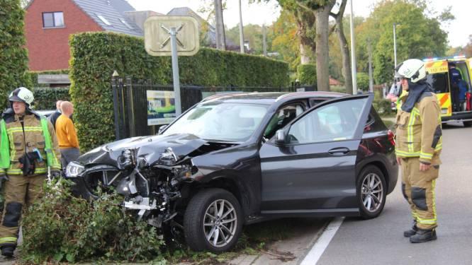 Chauffeur verliest controle over stuur en rijdt 4 boompjes op Brechtsebaan uit