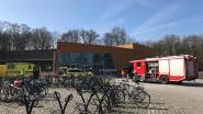 Chloordampen ontsnapt in zwembad Turnhout