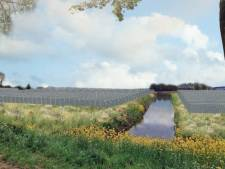 Groot zonnepark langs A15 staat op losse schroeven