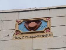 Deze bijzonderheden in Zwolle spot je alleen als je omhoog of omlaag kijkt