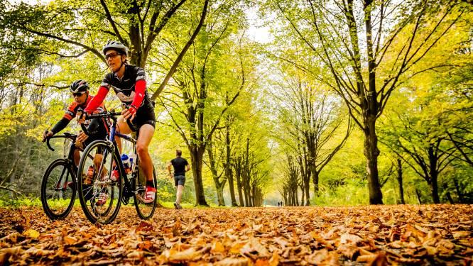 Mountainbikers in te grote groepen bekeurd voor negeren coronaregels op Utrechtse Heuvelrug