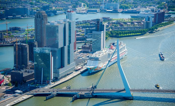 De Erasmusbrug in Rotterdam.