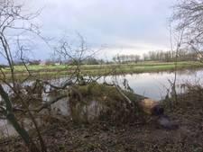Dijkwacht: dikke boom dreigt van Niers naar Maas te stromen