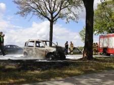 Automobiliste gewond bij botsing tegen bomen, auto vliegt in brand