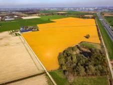 Landbouwgif verbieden? 'Kom met een haalbaar plan om boeren ermee te laten stoppen'