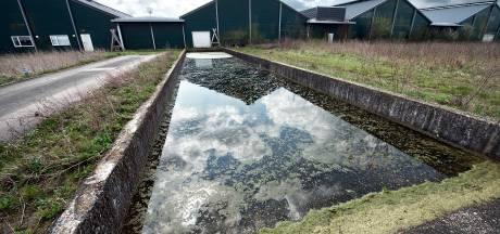 Van megakippenfarm naar melkfabriek; maar past dat wel in het buitengebied van Groesbeek?