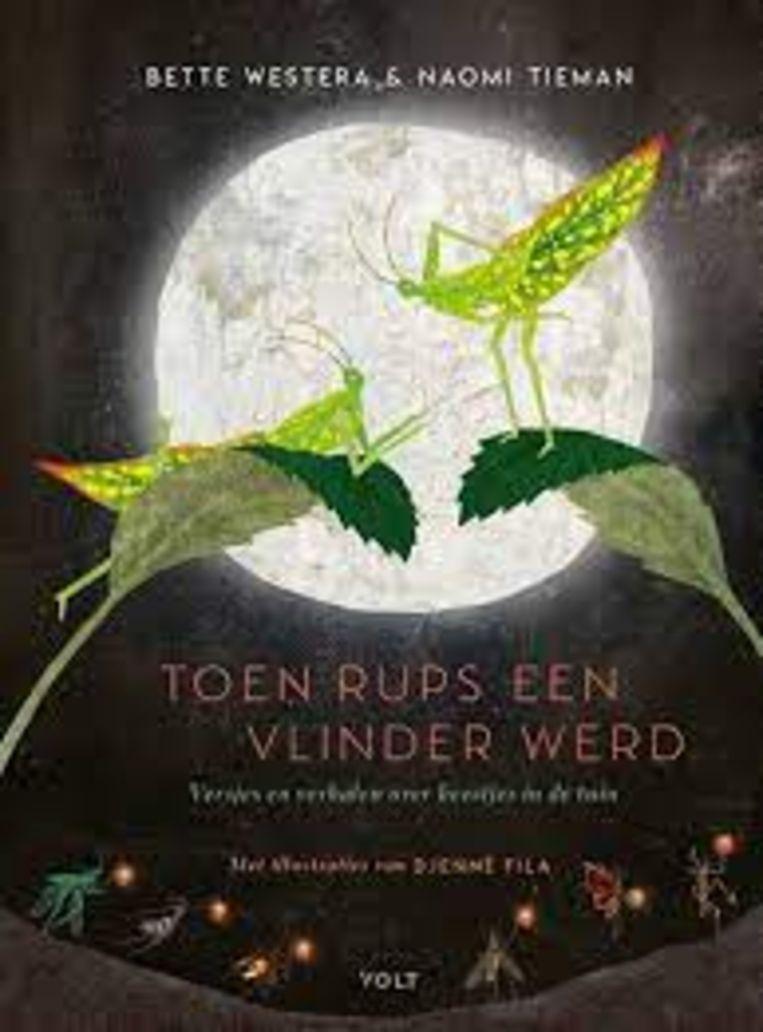 Bette Westera en Naomi Tieman, tekeningen Djenné Fila, 'Toen Rups een vlinder werd. Verhalen en versjes over beestjes in de tuin', Volt, 80 p., 17,99 euro, 8+. Beeld rv