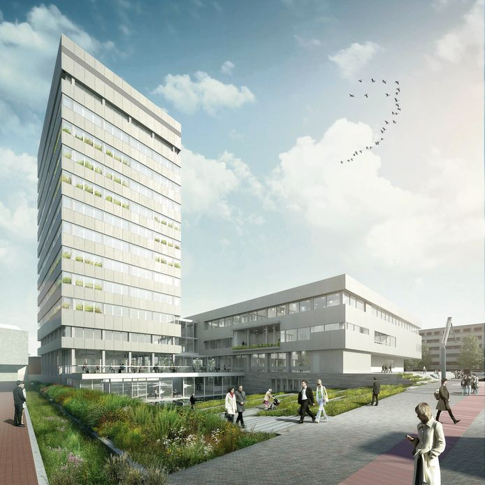 Ook de omgeving van het Stadhuis en de Stadhuistoren worden groener, ook op het Stadhuisplein.
