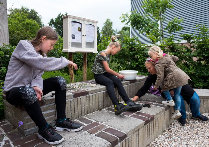 Kinderen vermaken zich bij de natuur-o-theek bij het NME Centrum De Woudreus.