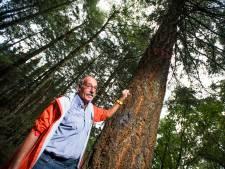 Natuurmonumenten blest bomen voor de kap op  drie meter hoogte om uitwissen door actievoerder te stoppen