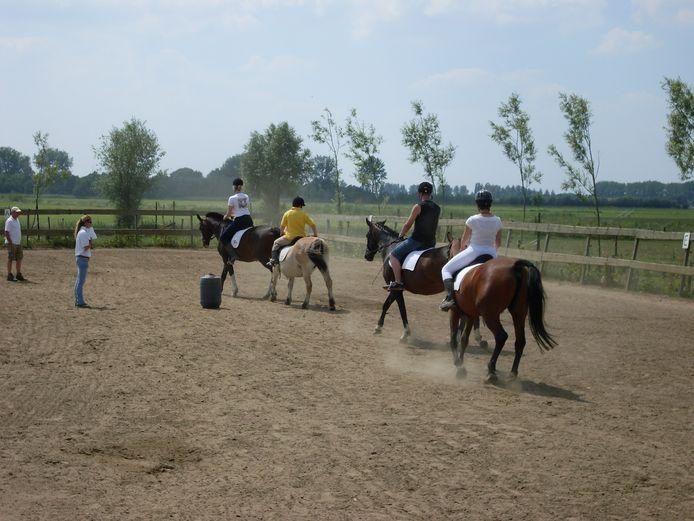 In Dreumel worden paarden ingezet voor therapie.