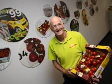 Tasty Tom, tomaat uit Beek en Donk en Aarle-Rixtel met een succesverhaal