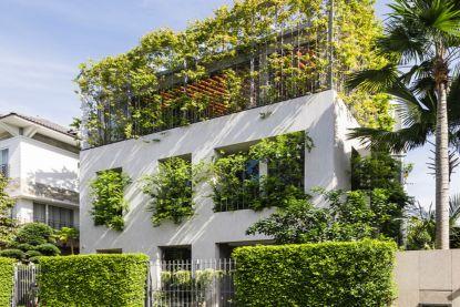 Pas gebouwd en nu al groeien planten en bomen door ramen en dak