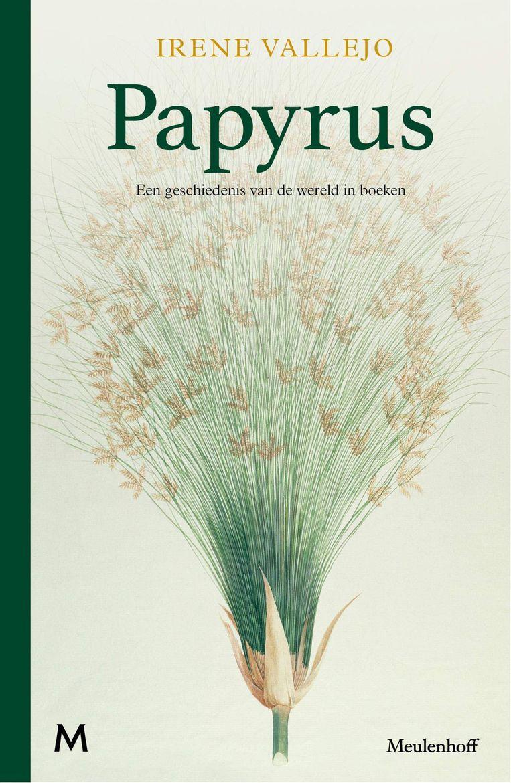 Irene Vallejo, 'Papyrus', Meulenhoff, 536 p., 29,99 euro. Vertaling Adri Boon.  Beeld RV