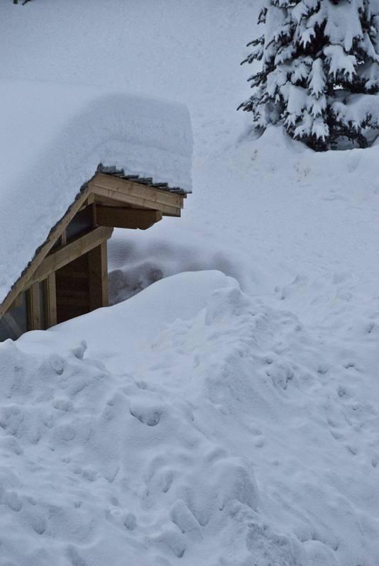 Sneeuw vormt een perfecte isolatie.