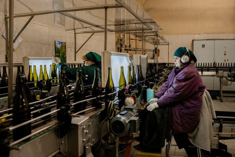 Een arbeider bij Artwine controleert de flessen op mogelijke barstjes.  Beeld Emile Ducke