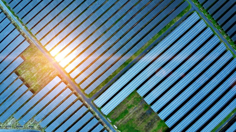Ons landelijke subsidiesysteem draait om schaalgrootte en efficiency. Beeld Getty Images