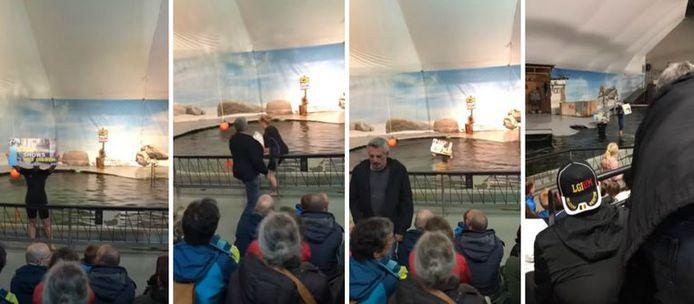 Het protest tijdens de zeeleeuwenshow in de zoo van Antwerpen.