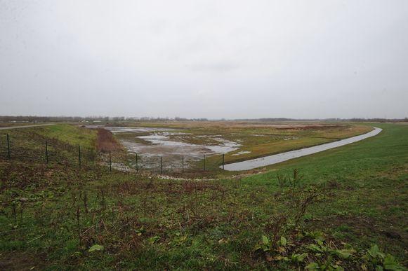 In het overstromingsgebied aan het Zennegat stond 10 cm water.