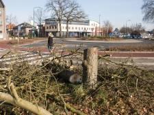 Vandalen zagen midden in de nacht kastanjeboom in Soest om