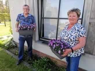 Open Vld plus wil Oosterzele opfleuren via bloemenwedstrijd
