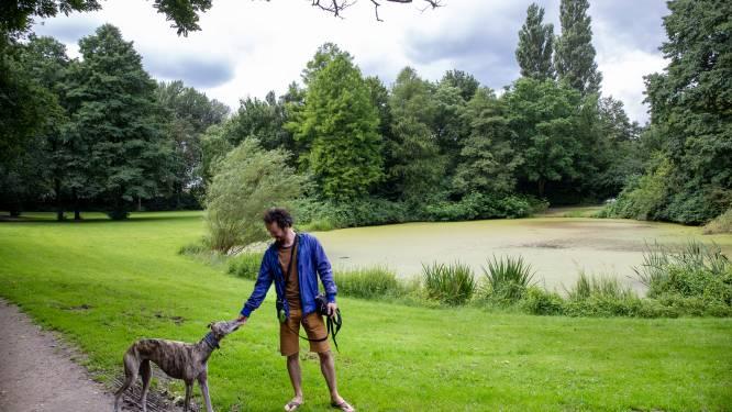 Gemeente Wageningen luistert naar hondenbezitters: loslopende honden in park de Blauwe Bergen worden gedoogd