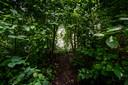 Het groen bloeit, maar aan de paden is te zien dat deze nog geregeld gebruikt worden.