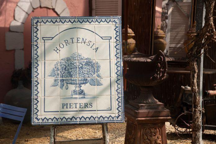 Hortensia Pieters bestaat dit jaar honderd jaar.