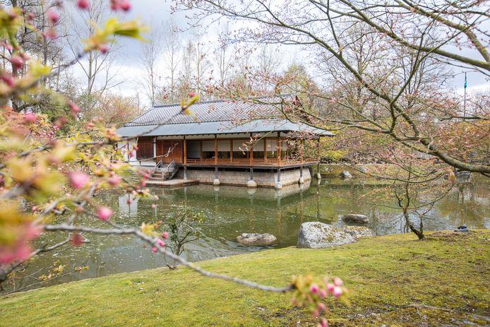 Dit weekend zullen Japanliefhebbers in de Japanse Tuin terechtkunnen voor twee cinema-avonden.