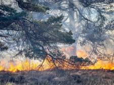 Rookoverlast in noorden van Nederland door Duitse natuurbrand