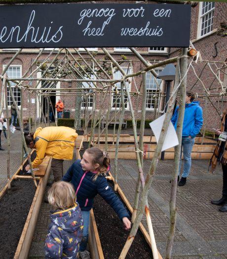Kinderen planten bonen bij Culemborgs museum: genoeg voor een heel weeshuis