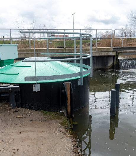 Bijzonder! Deze lift brengt vissen langs stuw in Zeewolde (maar heeft wel een fors prijskaartje)