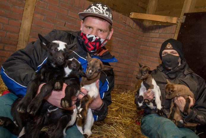 Een geboortegolf van geitjes in het Hertenkamp. Links verzorger Dennie Hofsommer (33) en rechts verzorger Thomas Palland (27 ) met vijf geboren geitjes.