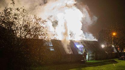 Uitslaande brand in loods in Sint-Ulriks-Kapelle