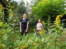 Diana houdt van relaxed tuinieren: 'Een kopje koffie in de ene hand, een snoeischaartje in de andere'