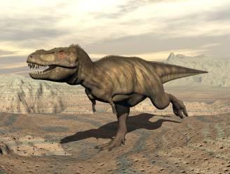 Indrukwekkende Tyrannosaurus was maar zo groot als een bordercollie bij geboorte