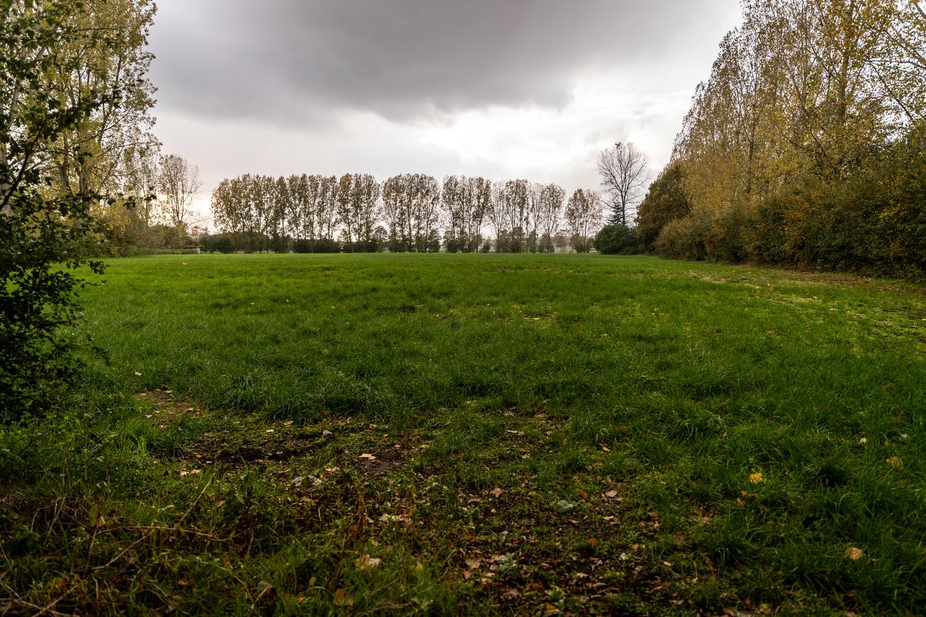 Een deel van het gebied in Stiphout-Zuid waar het bedrijf Solarcentury zonnepanelen wil gaan leggen.