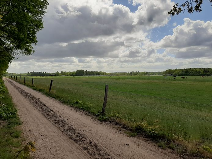 De Steenderbultweg in het buitengebied van Emst.