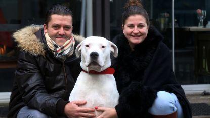 Lady Xena, de hond die in duet ging met Whitney Houston in Belgium's Got Talent, is overleden