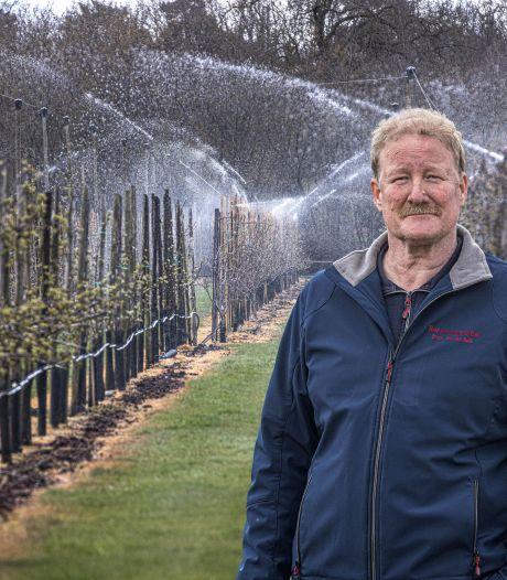 Nachtvorst op komst, fruittelers vrezen gevolgen:  'Geen oogst betekent geen opbrengsten'