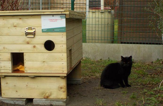 Schuilhuisjes voor zwerfkatten in Evergem.