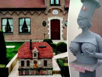 Wie heeft de 'meest kunstzinnige voortuin' van Vlaanderen? 10 finalisten maken kans op de trofee