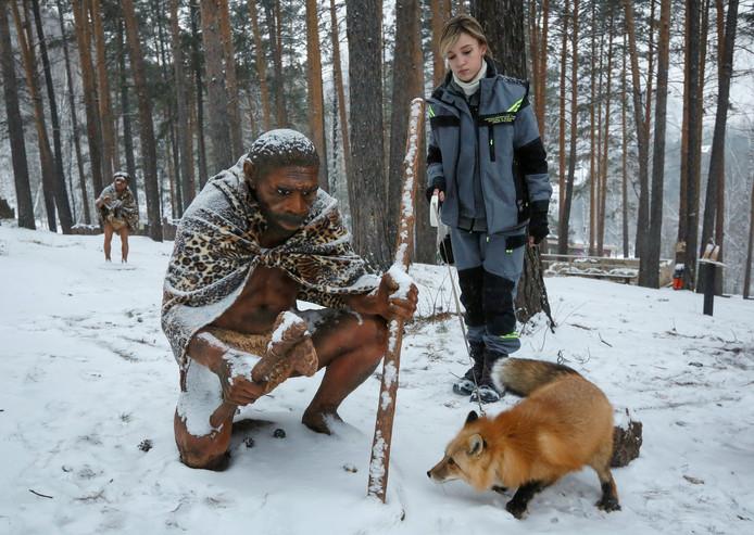 Ralph, een 1,5 jarige vos, krijgt een training in de Royev Ruchey dierentuin in Siberië. De vos leert omgaan met  bezoekers van het park en maakt deel uit van onderzoeken. Foto Ilya Naymushin